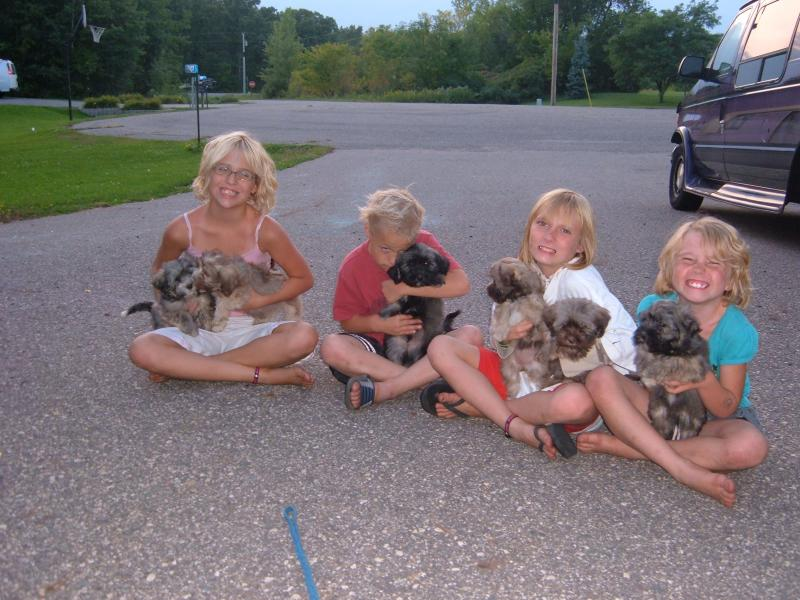 some of my little helpers...loving the puppies and playing with them...